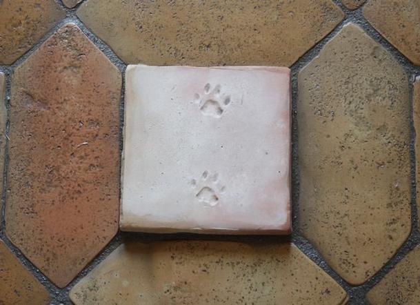 Patte de chat d cor carreau terre cuite salernes en for Carrelage terre cuite provence